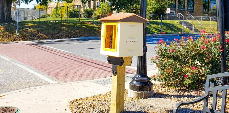 """""""Bee"""" a Reader Little Free Library"""