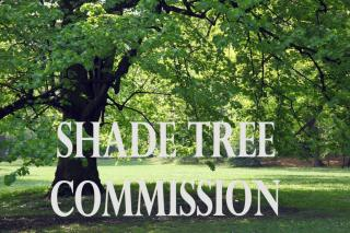 Shade Tree Commission Meeting